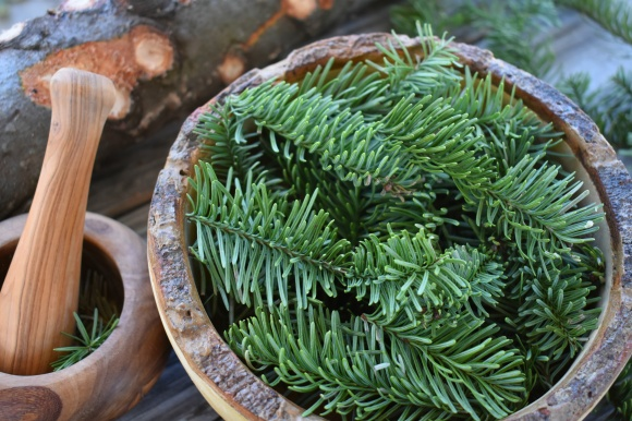 edited-pine-bowl-closeup