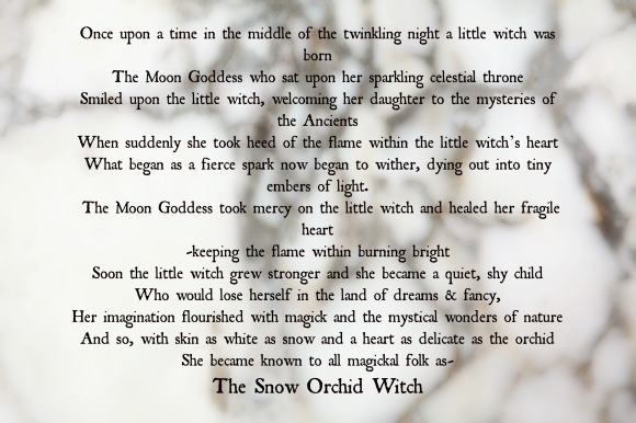 snow-orchid-witch-tale